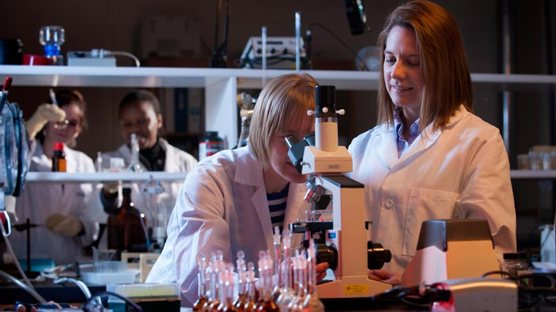 Biology students in the lab at the Department of Biological Sceince at the University of Idaho.