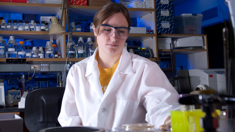 A Microbiology, Molecular Biology & Biochemistry gradutate student works in the lab.