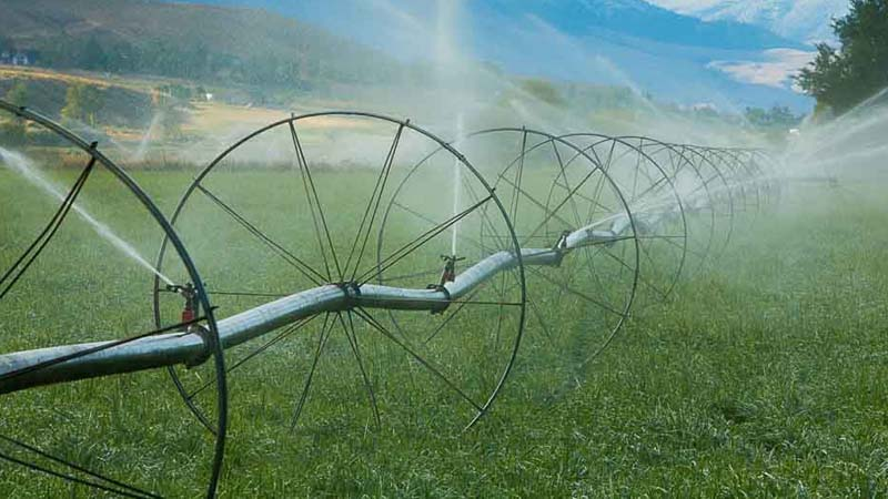 Gain the scientific expertise to better manage water for farming, forestry and other water-dependent industries.