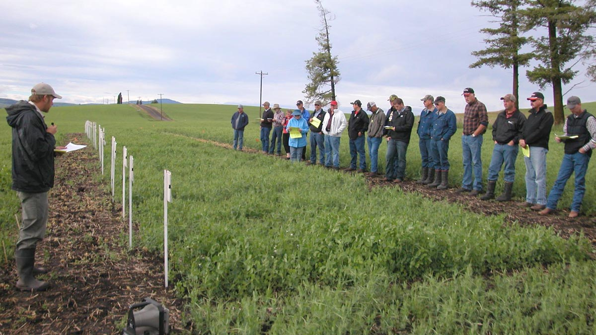 Teaching about different varieties out in the field