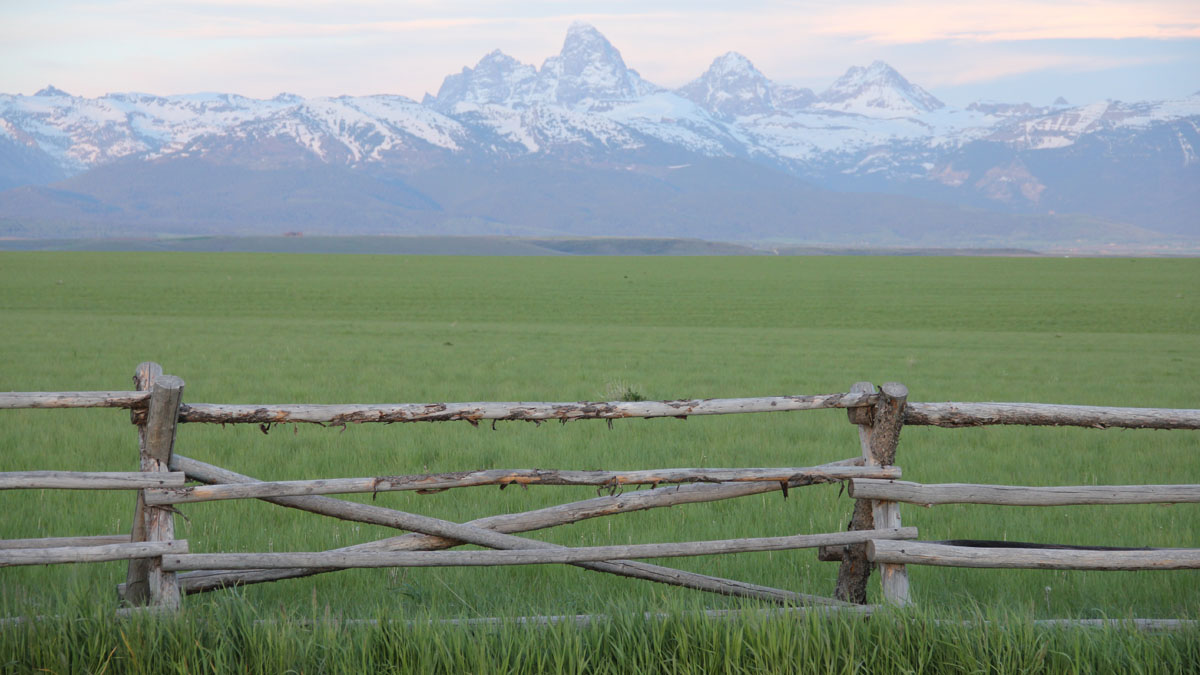 The landscape view of a field of grass and the Teton mountains in Teton County