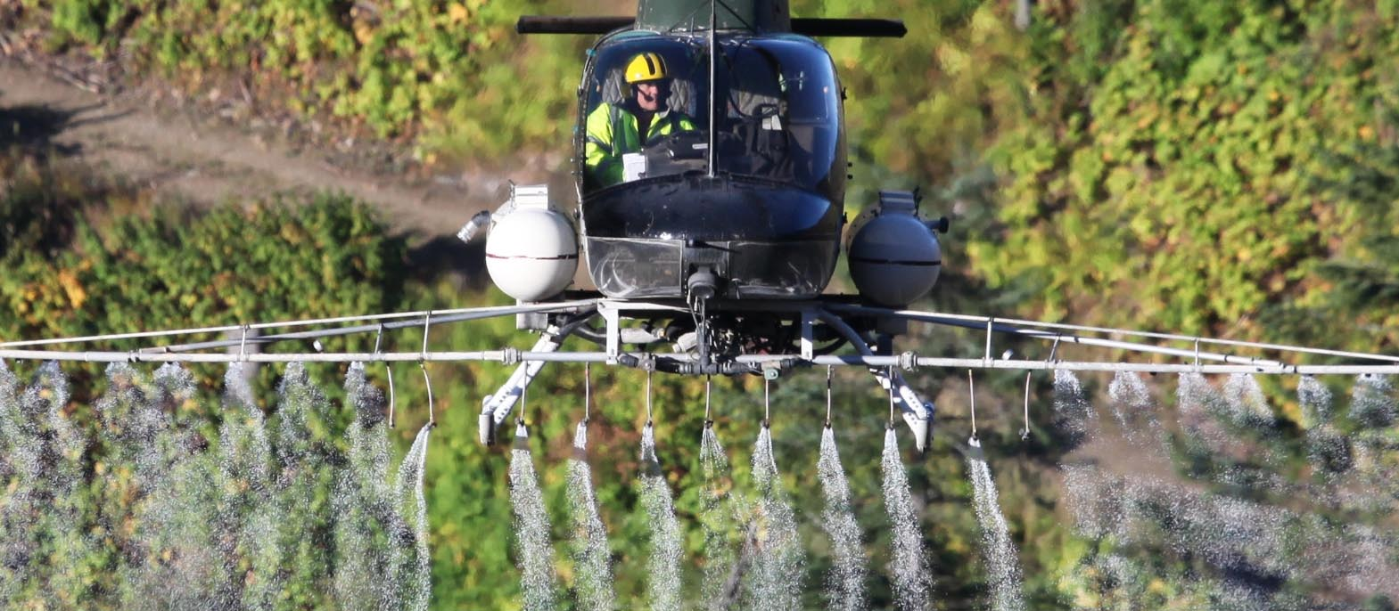 Helicopter flying on herbicides