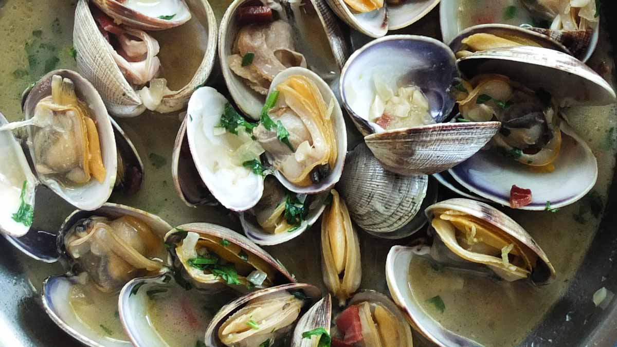 A bowl of steamed clams. Photo by Adrien Sala on Unsplash
