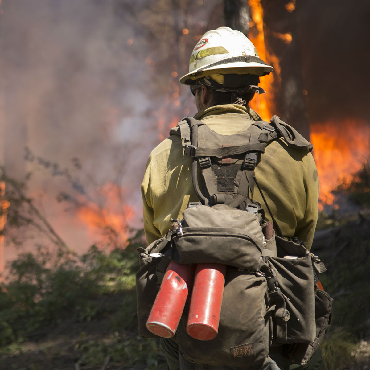 Firefighter standing in front in wildfire.