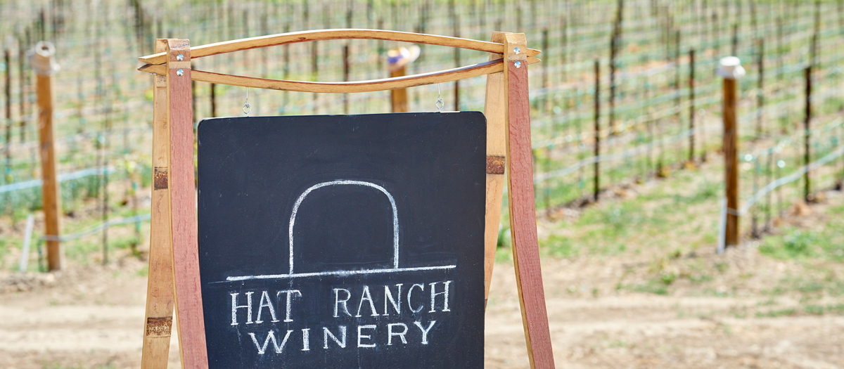The Hat Ranch Winery logo, with their vineyard in the background.
