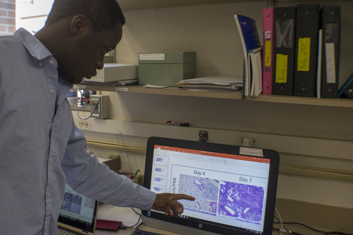 Emmanuel Ijezie points to pictures of inflamed mouse lung tissue on a computer.