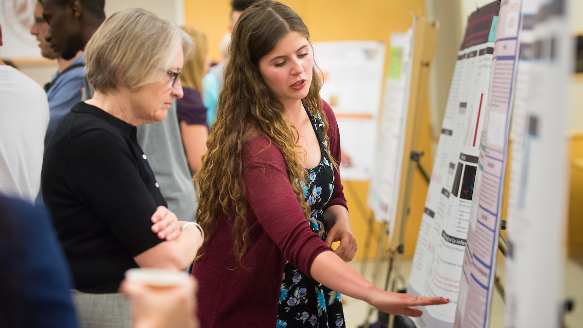 A student reviews a poster at a past Undergraduate Research Symposium