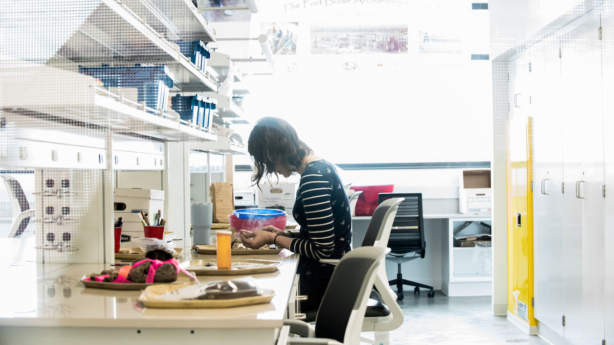 A researcher examines archaeological specimens in a lab