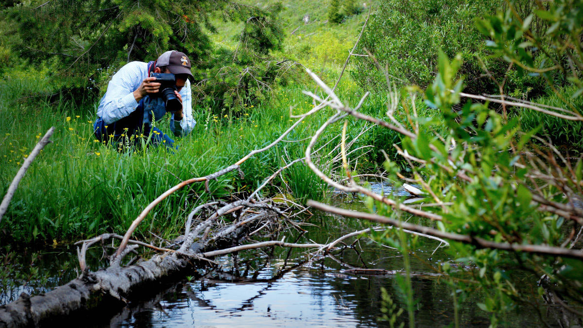 Justin Trujillo takes a photograph of wetland grass