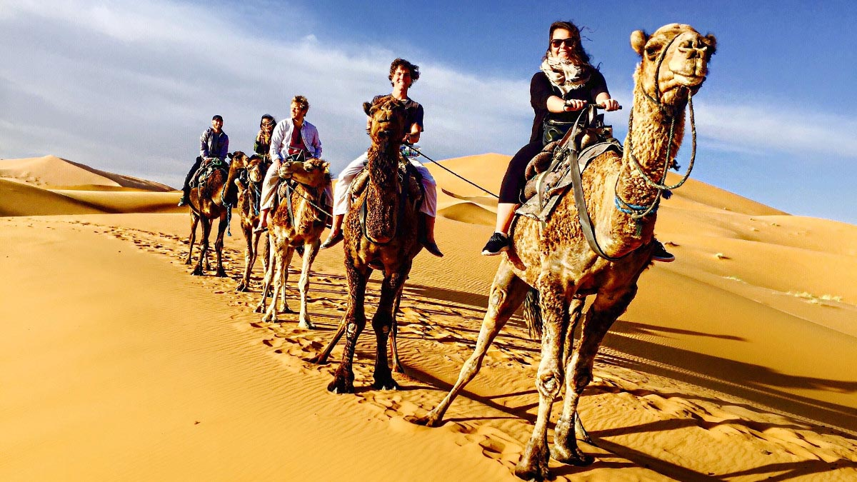 Students riding camels