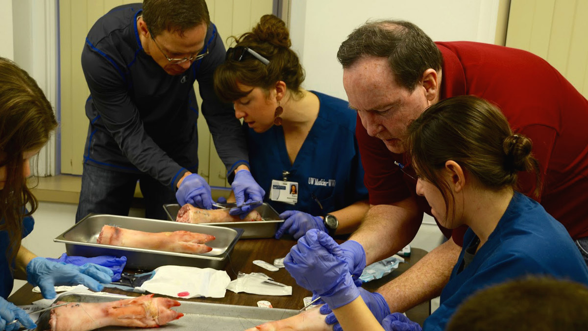 In the suture workshop with Dr. Hall, students practice sutures on pig feet.