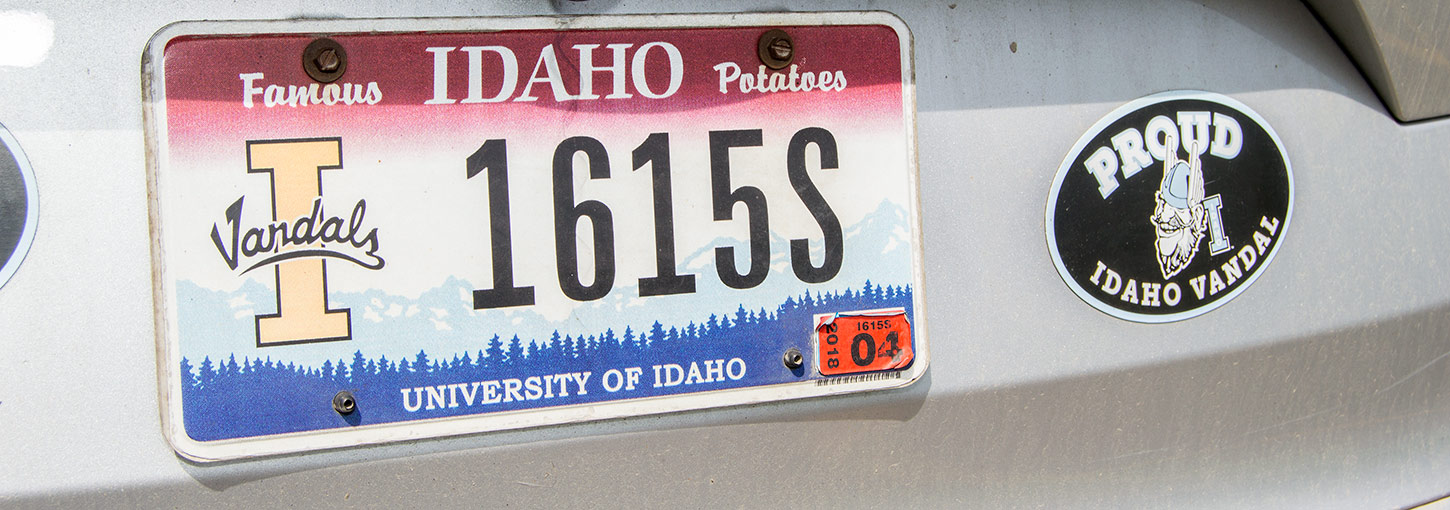 Vandal Pride License Plate on Silver Car