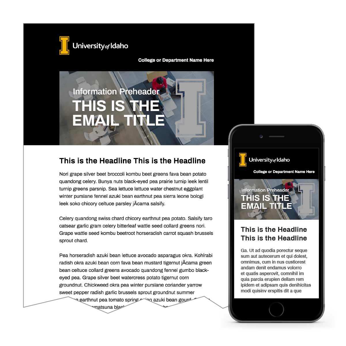 Dark Email Template 2