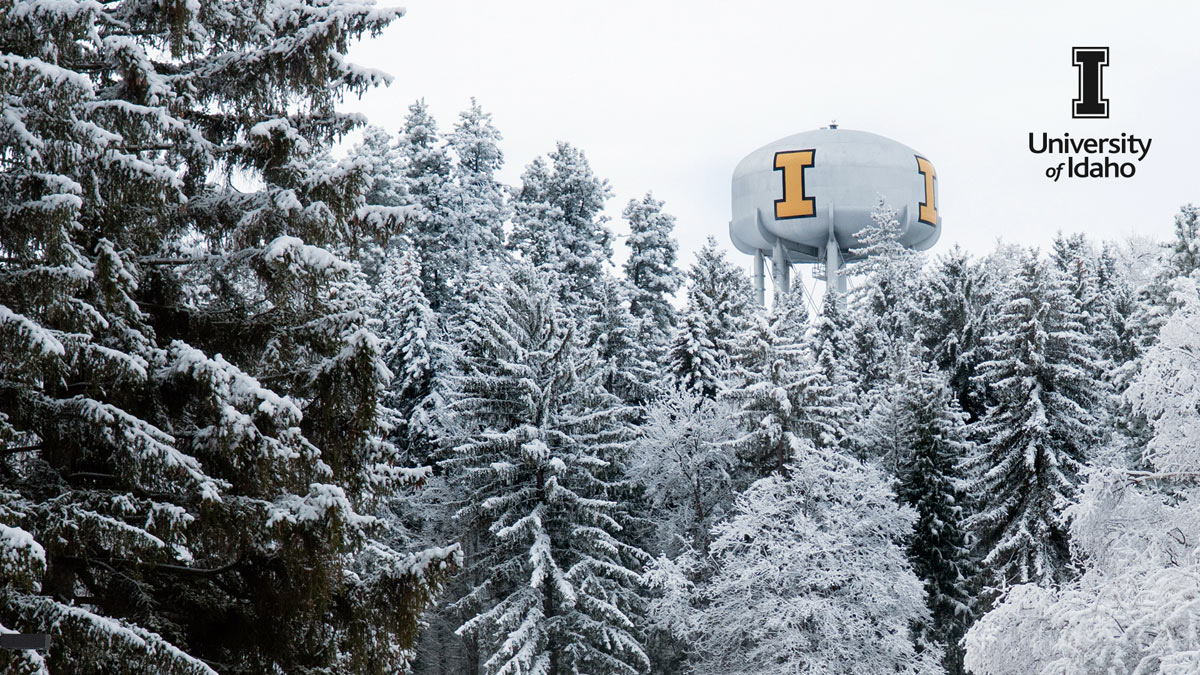 Snow-covered trees surround the I water tower.