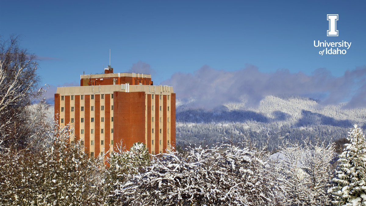 The Theophilus Tower with a snowy background
