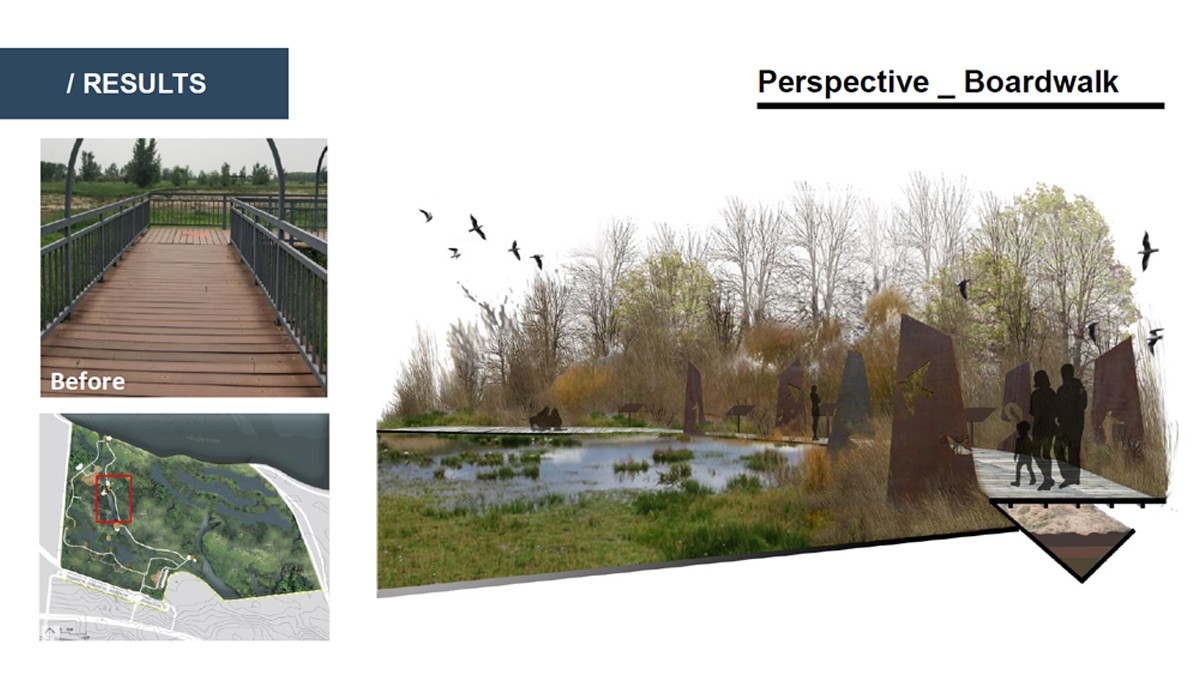 Landscape Architecture student project for a boardwalk through a wetland, including a before picture of the current wooden boardwalk and a rendering of a proposed design for a lowered walkway lined with modern sculpture.
