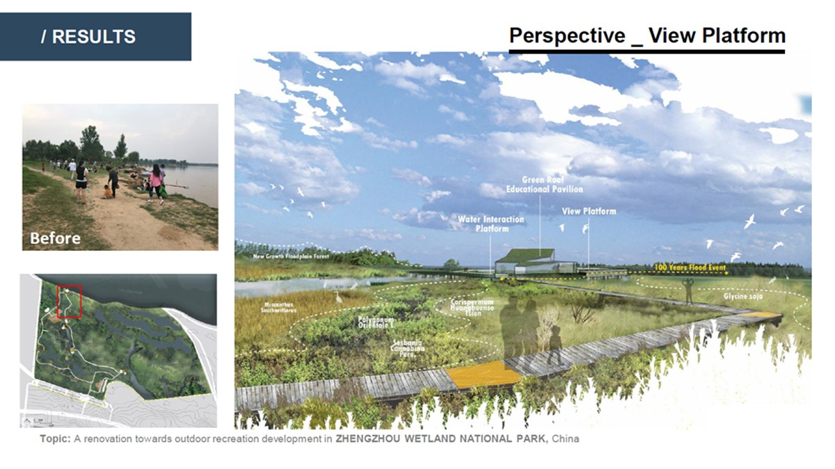 Landscape Architecture student project for a boardwalk through a wetland, birdseye view of the proposed plan.