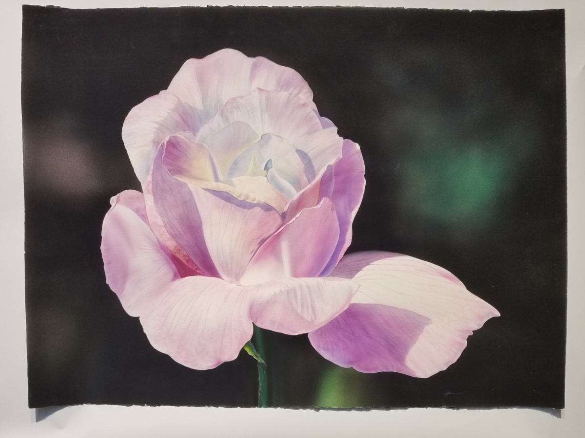 Watercolor painting of a pink rose by Kirk Lybecker.