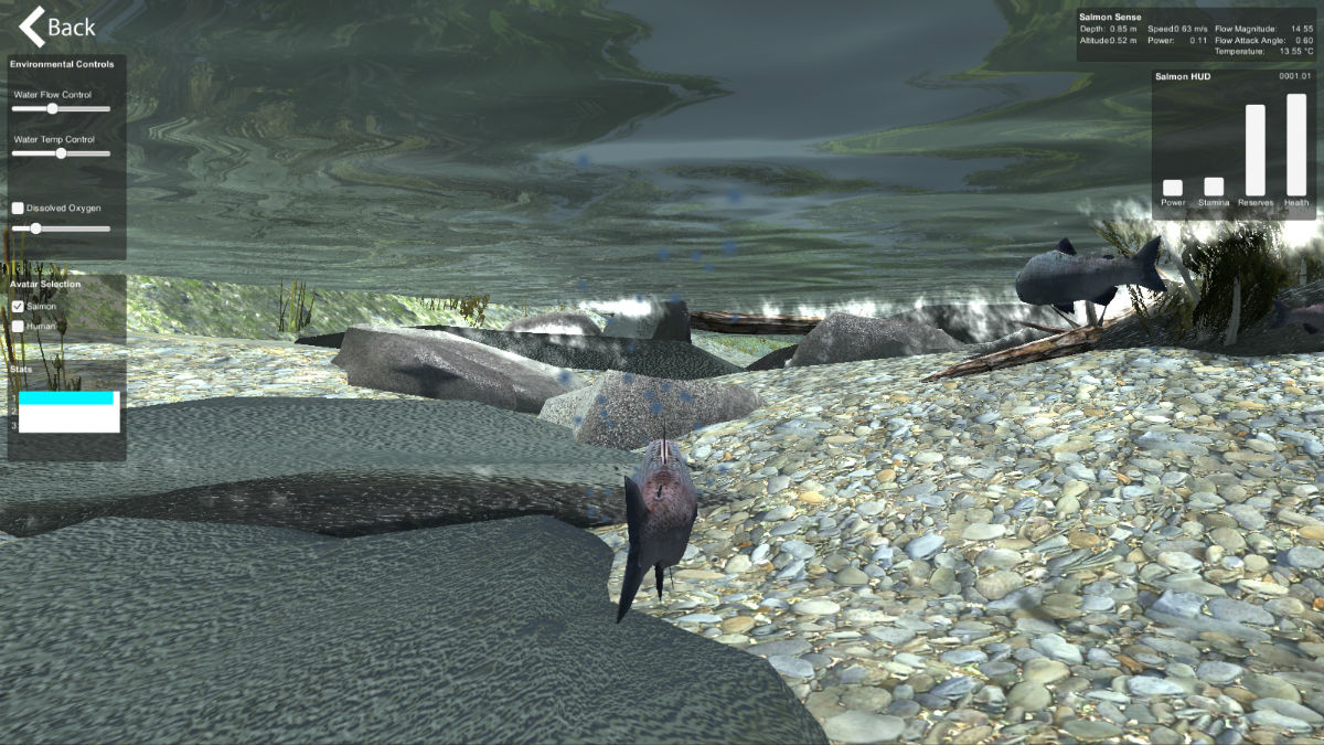 A screenshot from the Salmon Sim virtual environment, showing a fish swimming underwater.