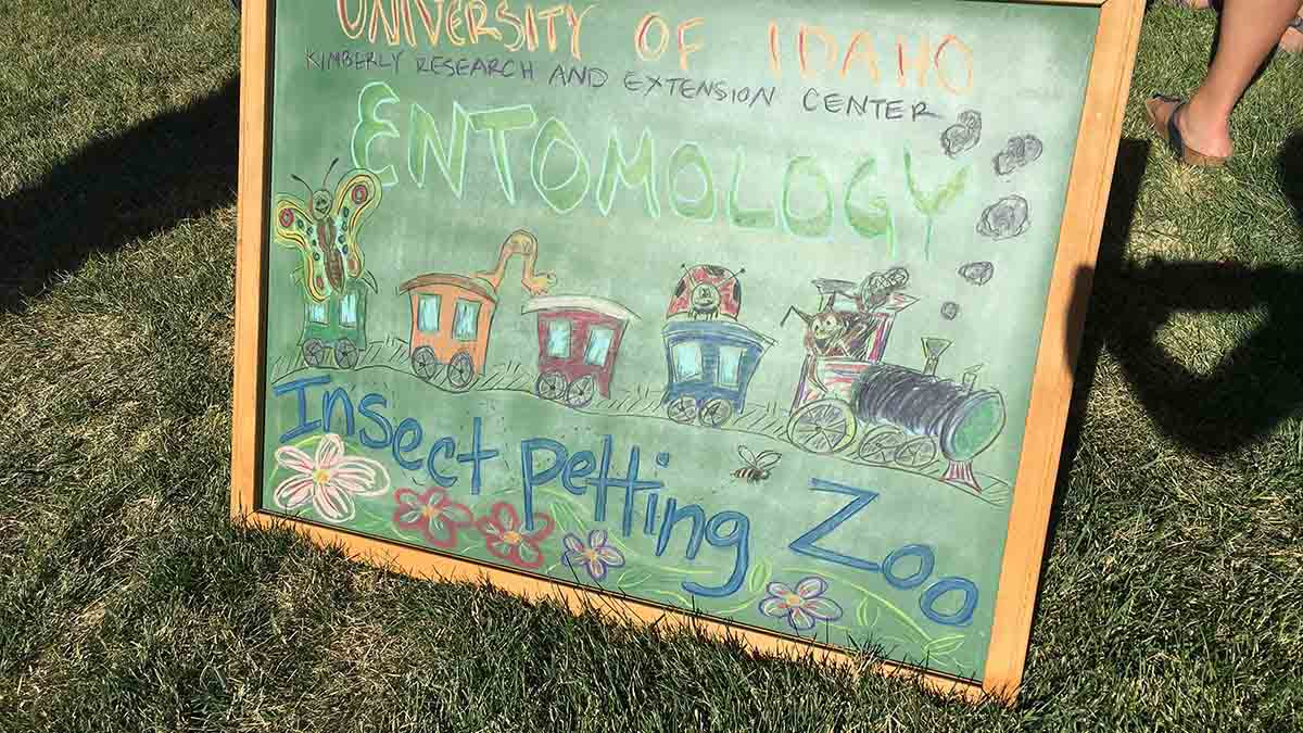 2016 Twilight Tour Insect Petting Zoo