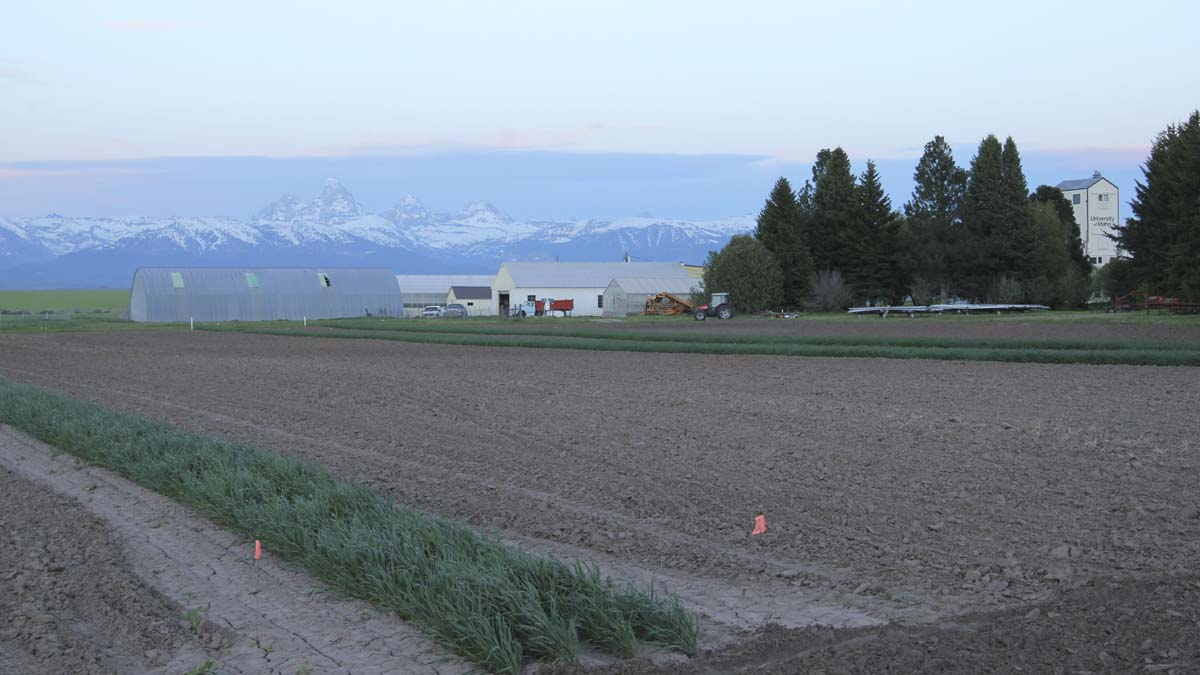 Tetonia Research and Extension Center