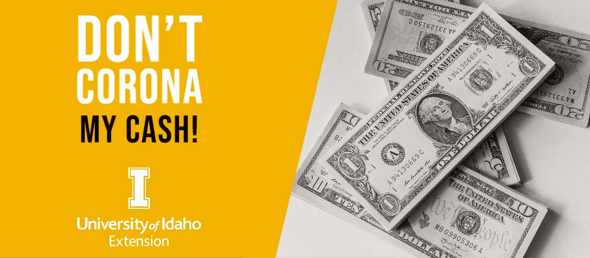 Don't Corona My Cash lessons graphic