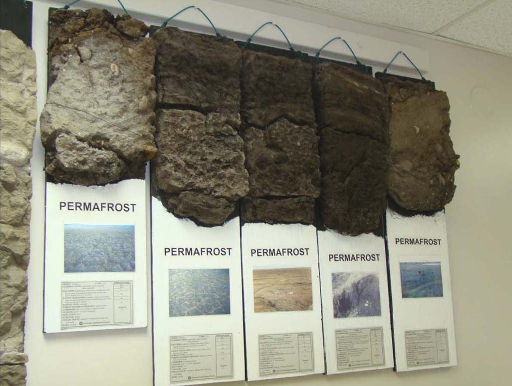 Maynard a fosberg soil monolith collection for Soil as a system
