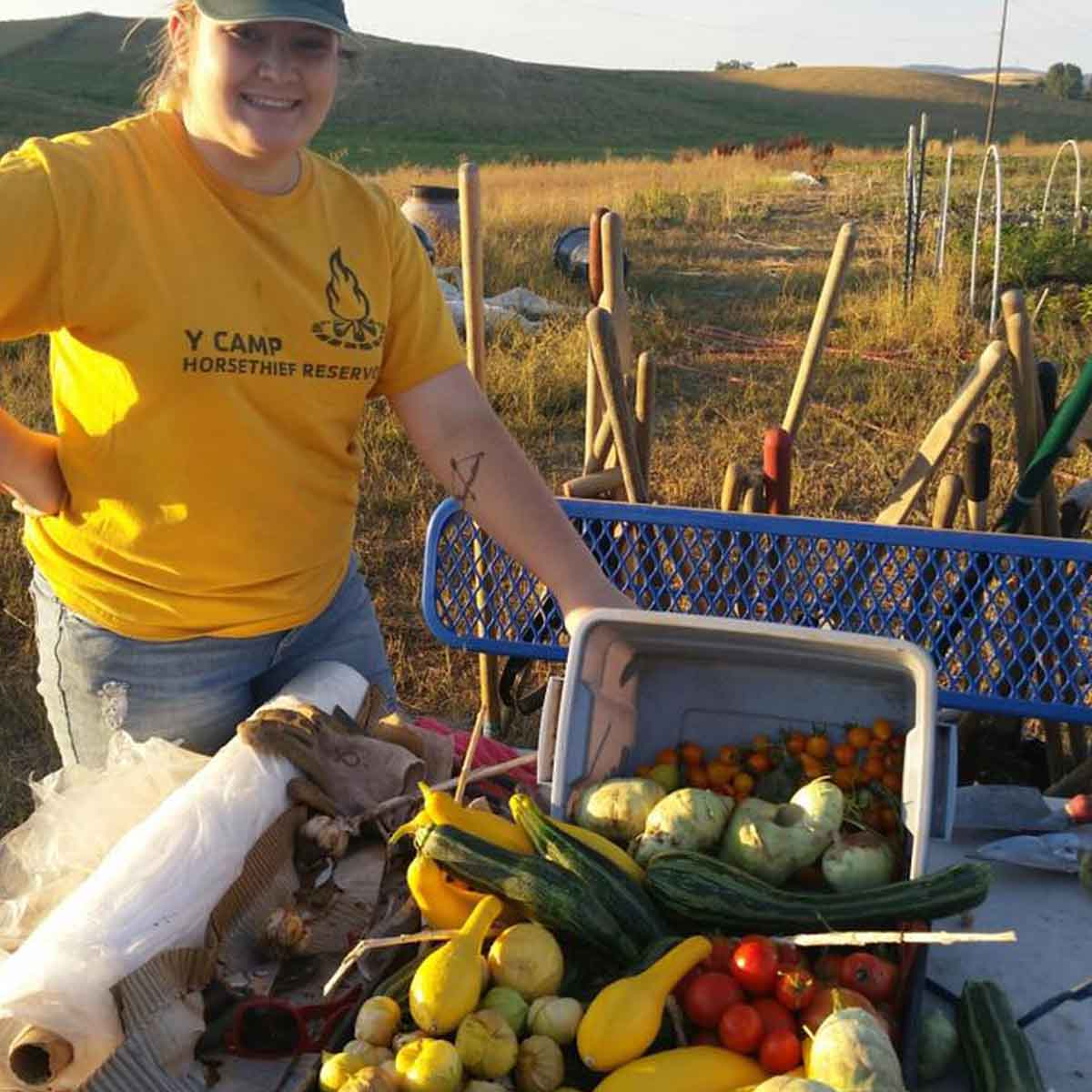 A cart full of harvested vegetables