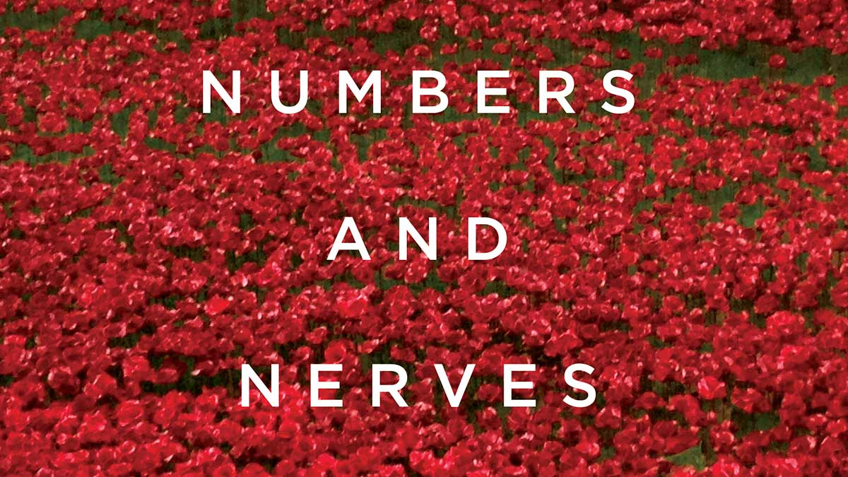 Numbers and Nerves book cover