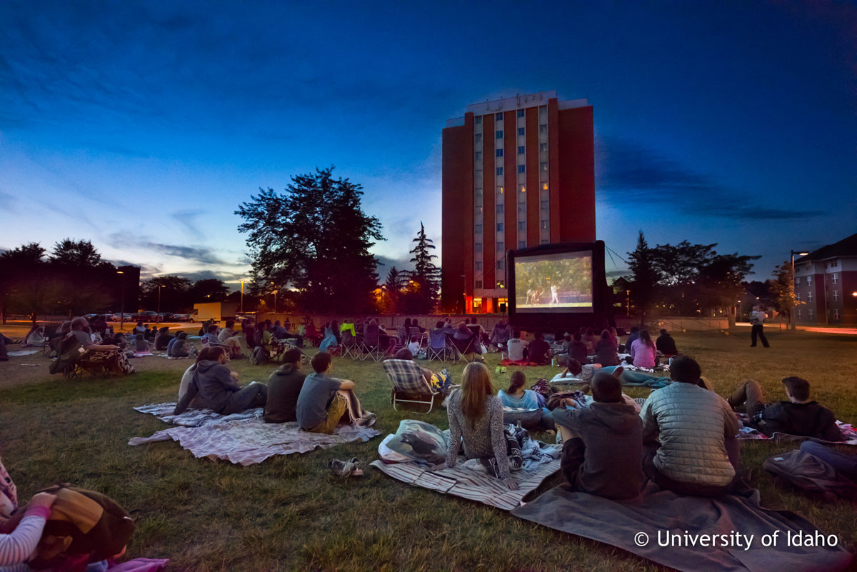 movie-on-the-lawn