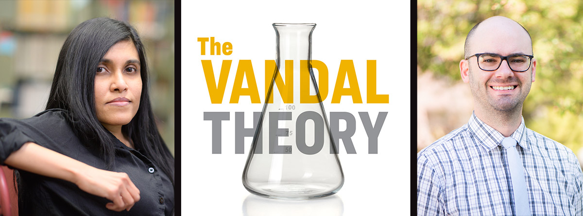 The Vandal Theory