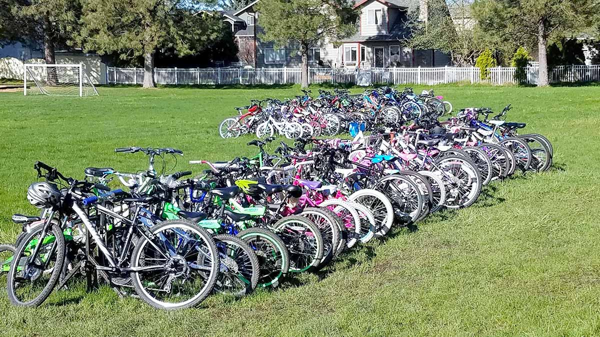 A large group of bikes in a park