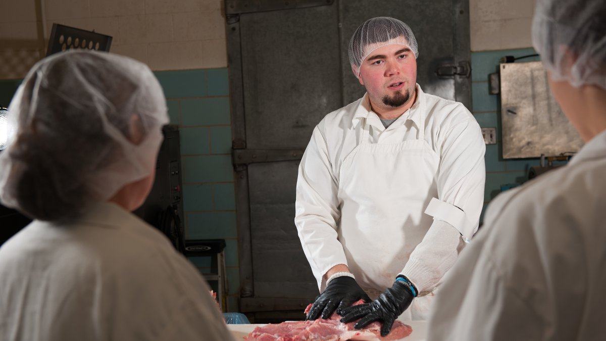UI student of CALS tries his hand at butchering with Vandal Brand Meats.