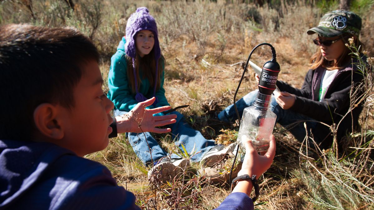Three young students sit in the grass and test the surrounding plantlife.