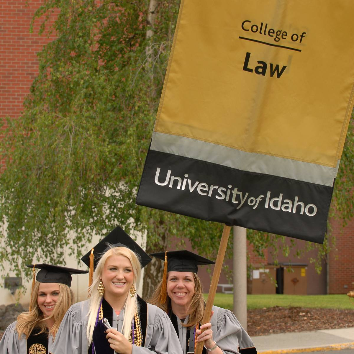 The law grads of UI, class of 2015.