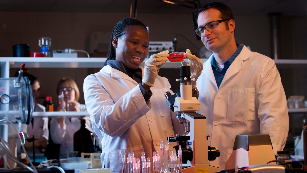 UI students working in the lab.