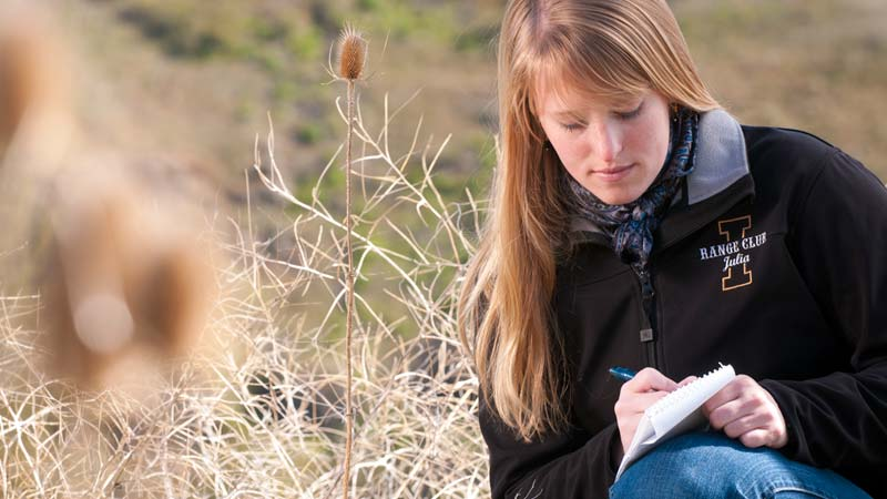 Study and learn from rangeland experts. Explore rangeland ecology and management science in real world settings at Idaho's Rangeland Center at the University of Idaho.