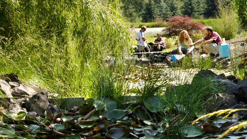 Environmental science students conduct research outside in the University of Idaho's arboretum.