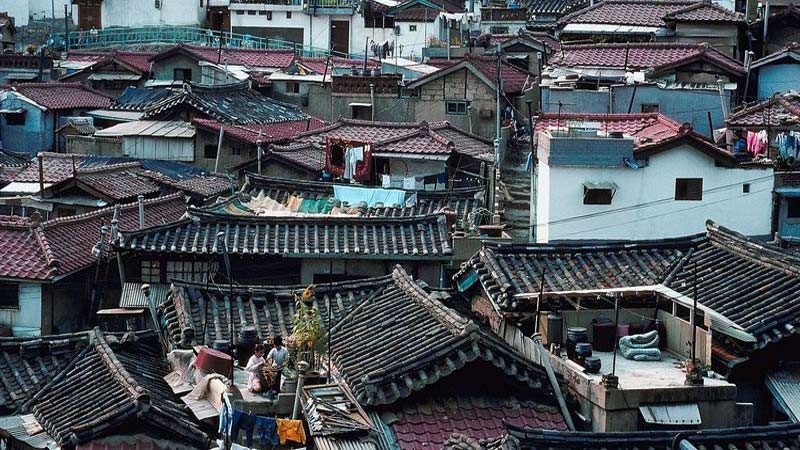 A rooftop view of a slum in Korea