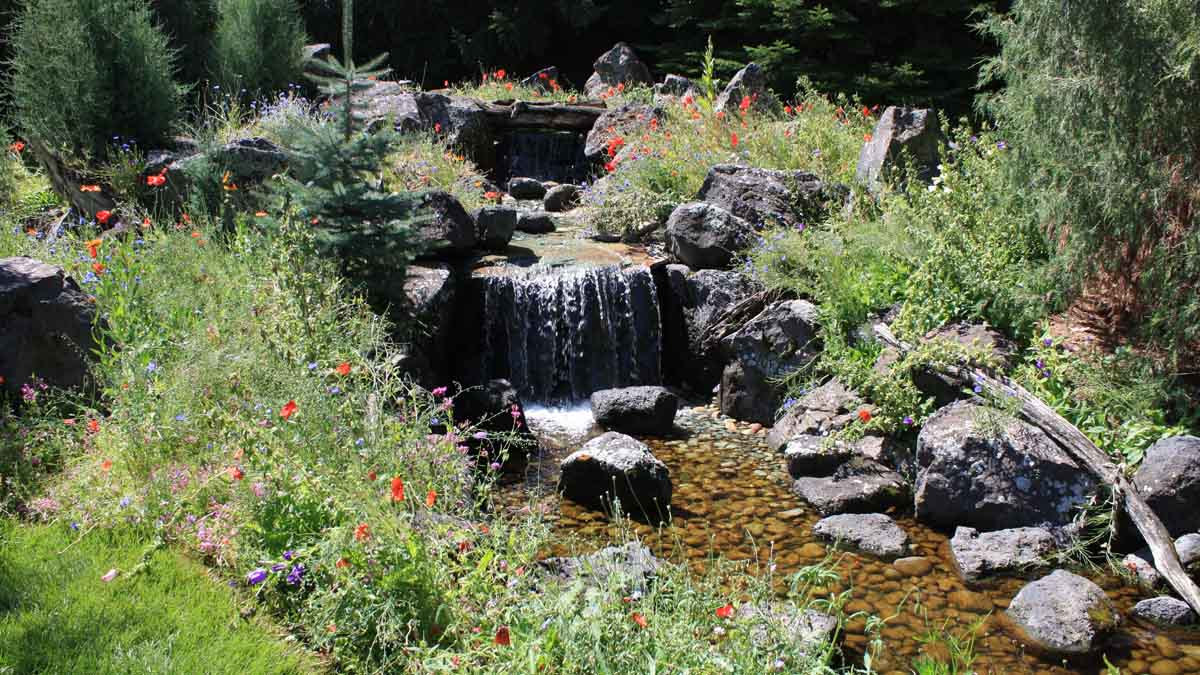 A flower garden and water element in landscaping