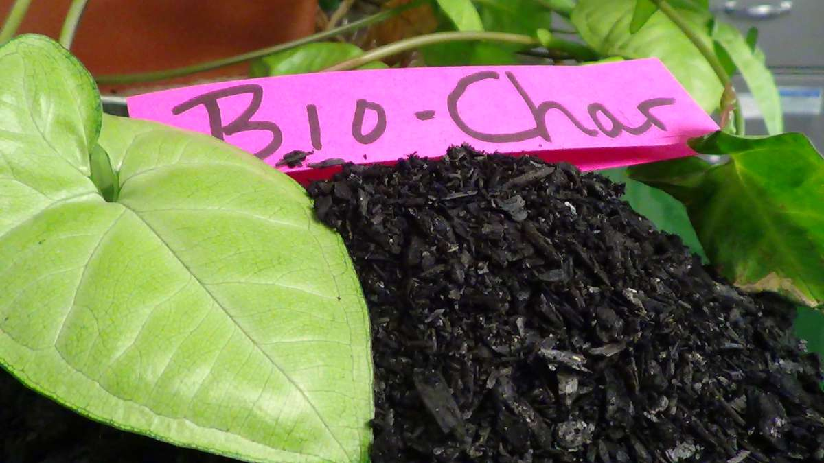 "A pile of small black flakes has a label that says ""Bio-Char."""