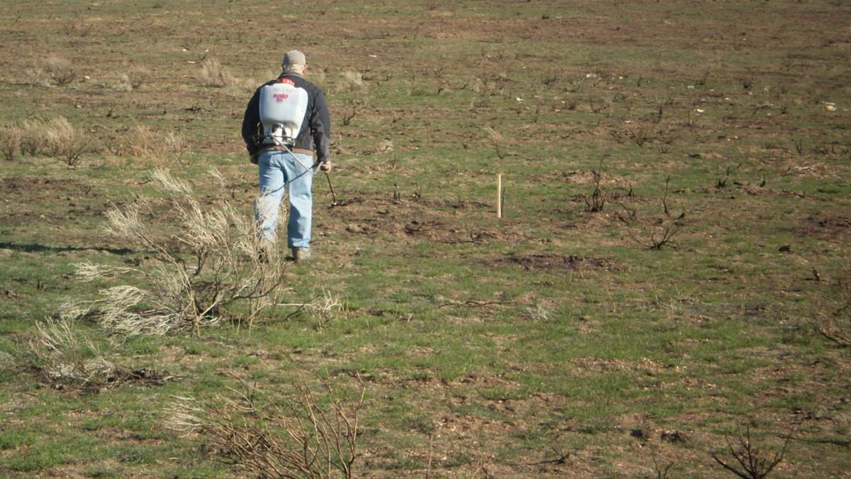 A man carries a sprayer through a rangeland.