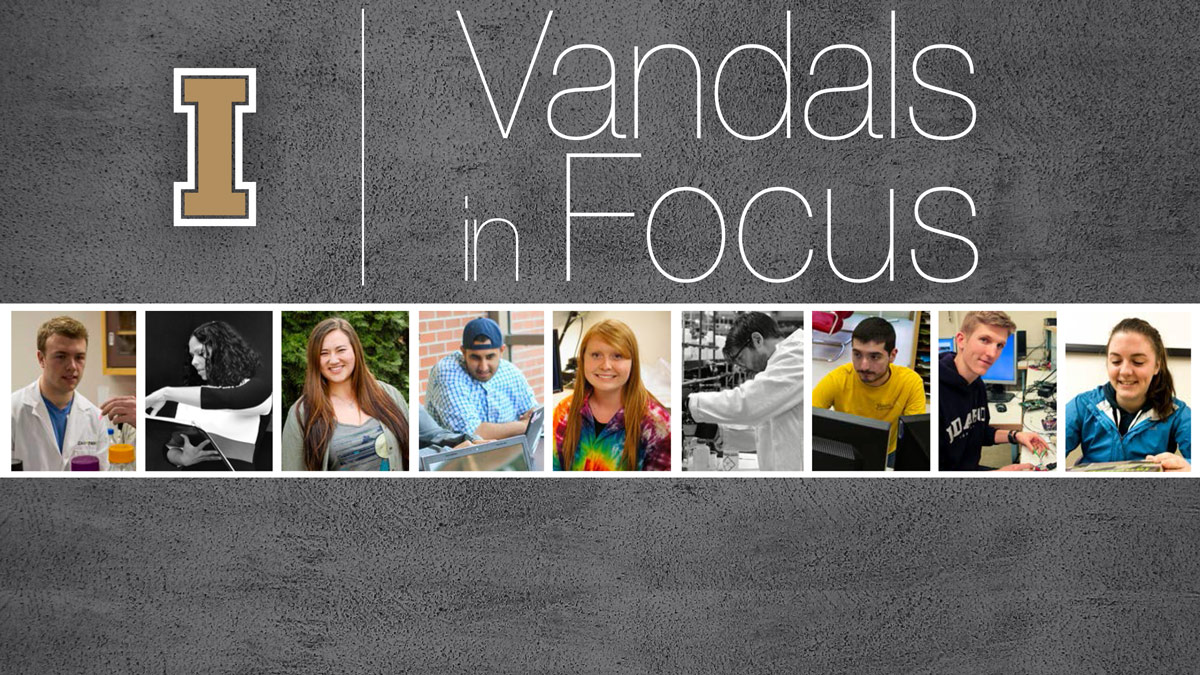 Vandals in Focus Cover Image