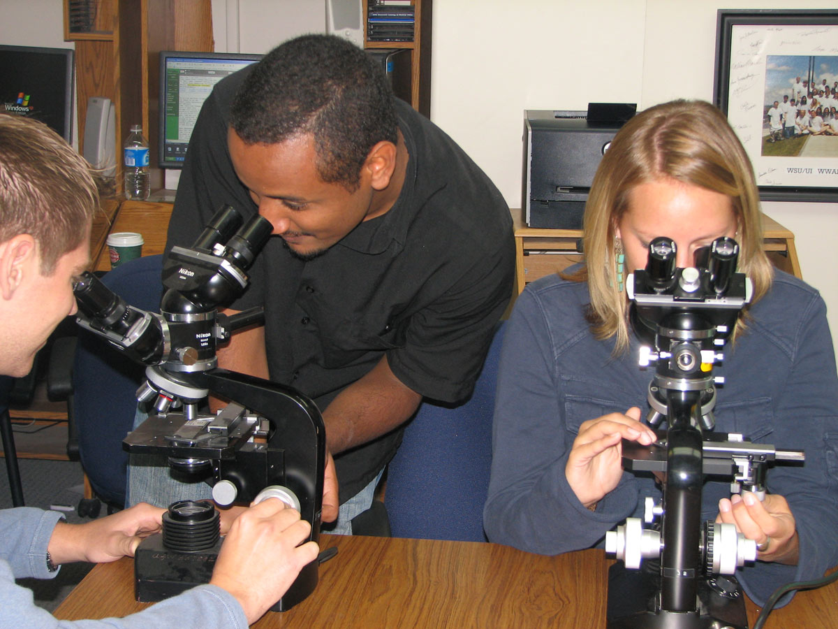 Students viewing with a microscope.
