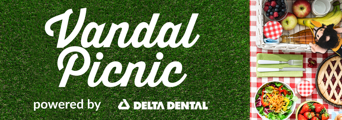 Vandal Picnic powered by Delta Dental