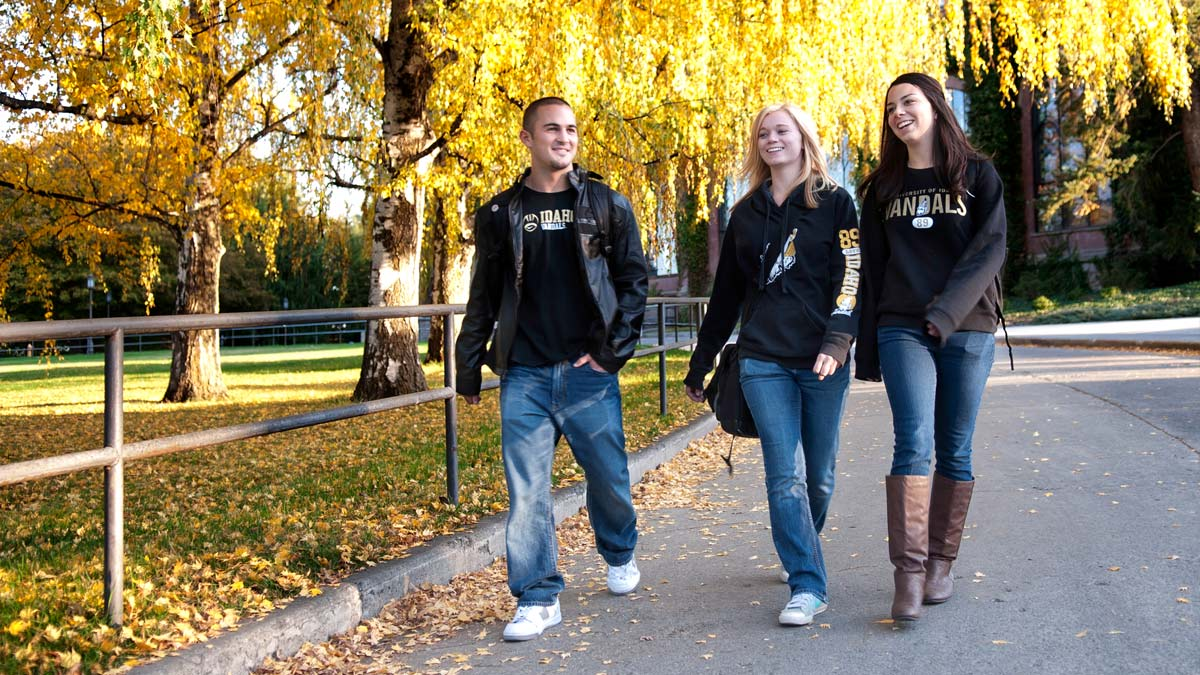Three students walking along the road leading from the Administration Building in the fall.